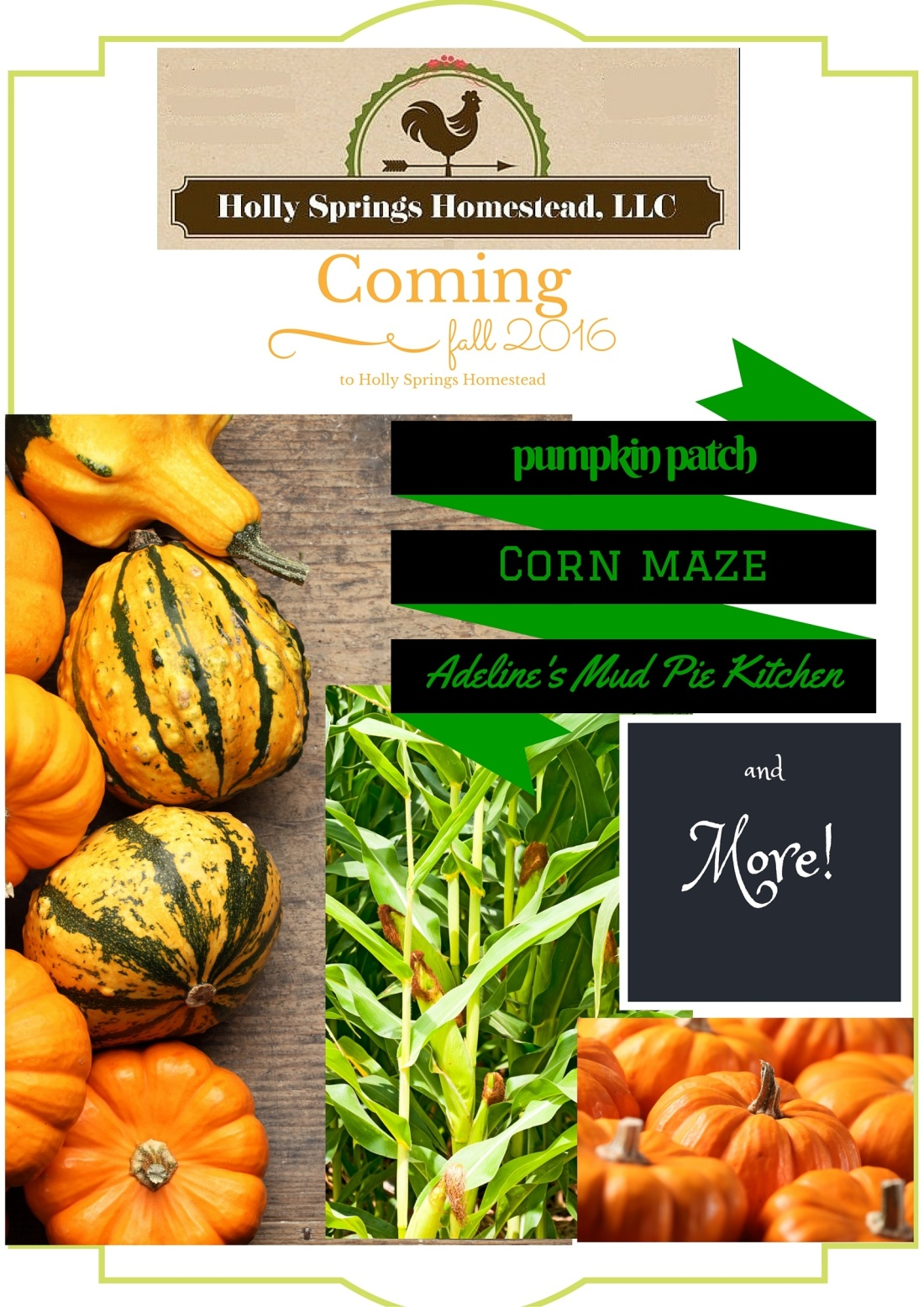 pumpkin patch, corn maze, mud pie kitchen2